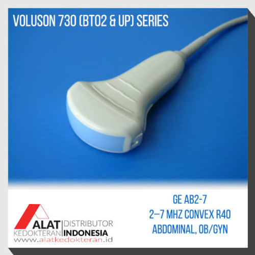 Probe USG Compatible GE Voluson 730 convex